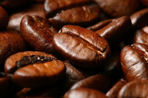 コーヒー焙煎豆はそのまま食べても栄養素がある?!【熊本珈琲研究所わたる】