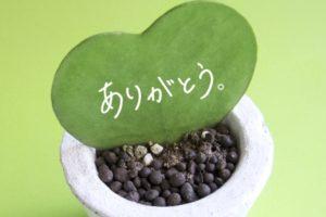 熊本コーヒープレゼント